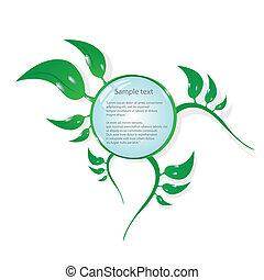 bio, concept, eco, button., vecteur, vert, floral