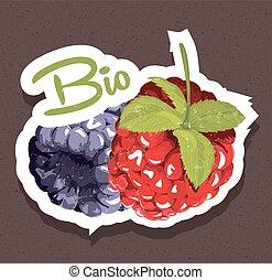bio, etichetta, lamponi