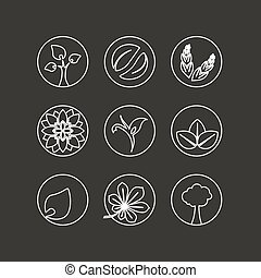 bio, fiore, naturale, natura, semplice, foglia, astratto, -, elemento, simboli, albero, vettore, disegno, organico, cerchio, bianco, spikelet