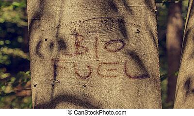 Bio fuel concept with the words - Bio Fuel - handwritten on...