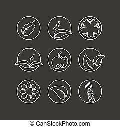 bio, mela, fiore, naturale, natura, semplice, foglia, astratto, bianco, -, elemento, simboli, vettore, disegno, organico, cerchio, spikelet