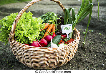 Bio organic vegetables basket with label