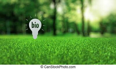 Bio paper lamp ecology concept