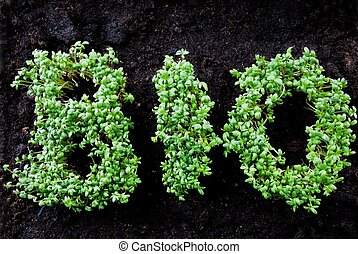 the word BIO written with fresh grown cress