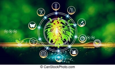 Green environment with Center and spoke Concept ,Plant on center and rotating Icons
