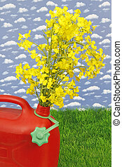 Biodiesel - Red jerrycan with yellow blooming rape