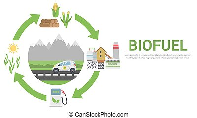 Biofuel life cycle