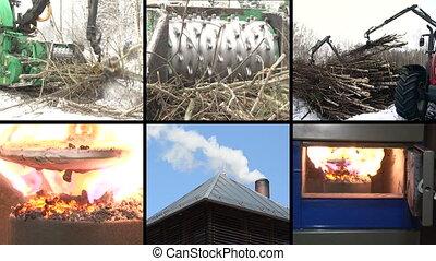 biofuel process collage