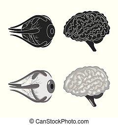 biologi, ikon, sätta, stock., logo., vektor, vetenskaplig, ...