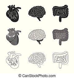 biologi, illustration., skylt., illustration, vektor, ...