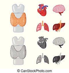 biologi, illustration., skylt., kollektion, vektor, design, ...