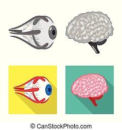 biologi, illustration, vetenskaplig, vektor, symbol., block...