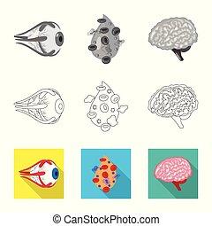 biologi, sätta, vetenskaplig, skylt., objekt, web., isolerat...