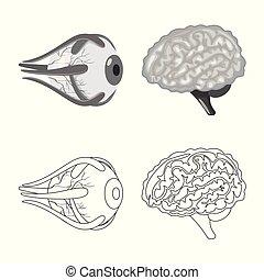 biologi, sätta, vetenskaplig, skylt., symbol, block, web., ...