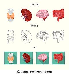biologi, sätta, vetenskaplig, symbol, web., vektor, design, ...