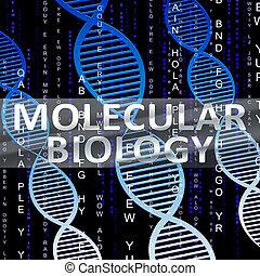 biologia,  DNA,  3D, illustrazione, ricerca, molecolare, mostra