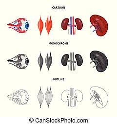 biologia, scientifico, simbolo, web., collezione, vettore, disegno, laboratorio, icon., casato