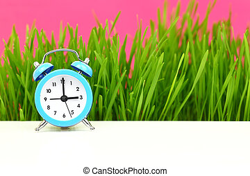 """Biological"" clock concept, with grass and pink background"