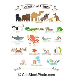 Biological evolution animals. Colorful icons with signs on...