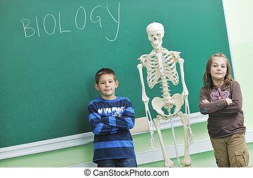 biologie, école, apprendre