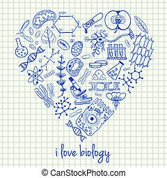 biologie, werkjes, in, hart gedaante