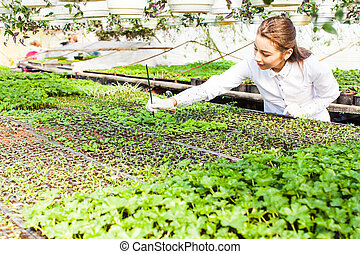 biologist in greenhouse