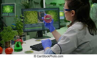 Biologist researcher woman analyzing vegan beef meat for microbiology experiment. Chemist scientist researcher examining food genetically modified using chemical substance typing biological expertise on computer