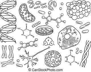 Biology and chemistry icons isolated, hand-drawn...