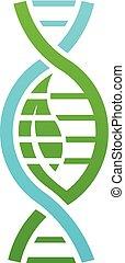 Biology DNA logo. Vector graphic design