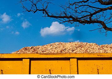 biomass, 中に, 容器