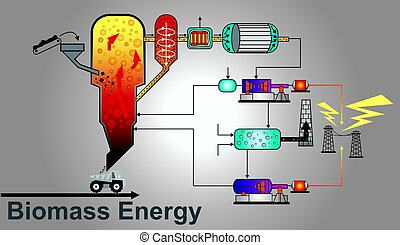 Biomass energy power. Education info graphic vector. -...