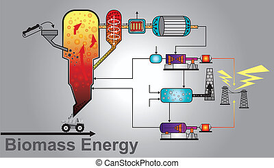 Biomass energy power. Education info graphic vector.