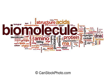 Biomolecule word cloud concept - Biomolecule word cloud