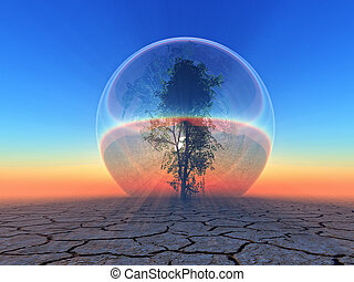 biosphere - a tree inside a  bubble on sunset background