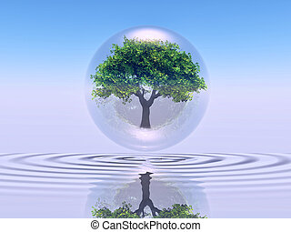 Biosphere - a tree inside a bubble over water