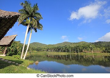 Las Terrazas, Cuba, UNESCO Biosphere Reserve in Sierra del Rosario mountain range.