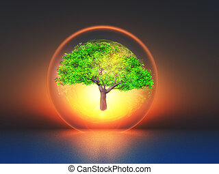 biosphere - a tree inside a transparent bubble on sunset...