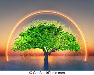 biosphere - a tree inside  a transparent light bubble