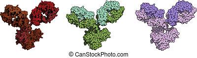 biotech, gra, lekarstwa, dużo, igg1, (immunoglobulin).,...