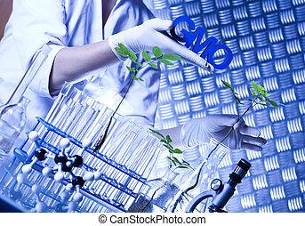 Biotechnology , GMO