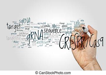 (biotechnology, mot, genomes, système, engineering), crispr/...