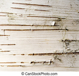 Birch Bark Abstract - Photo of some birch bark on an old...