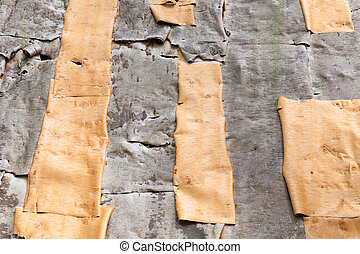 Birch bark hut wall