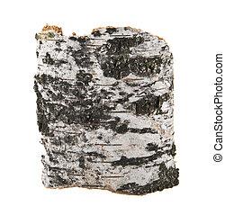 birch bark isolated on white background