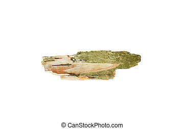 Birch bark . Isolated on white background