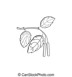 Birch branch in the style of engraving on a white background. Vector illustration