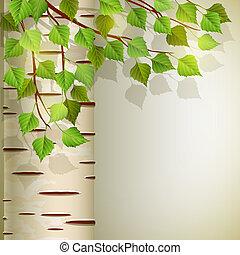 Birch - Vector illustration - background with birch, EPS 10,...