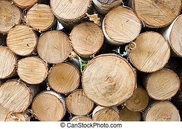 Birch fire wood