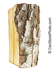 Birch firewood tree log on white background