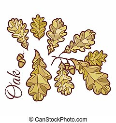 Birch leaves in stained illustration.